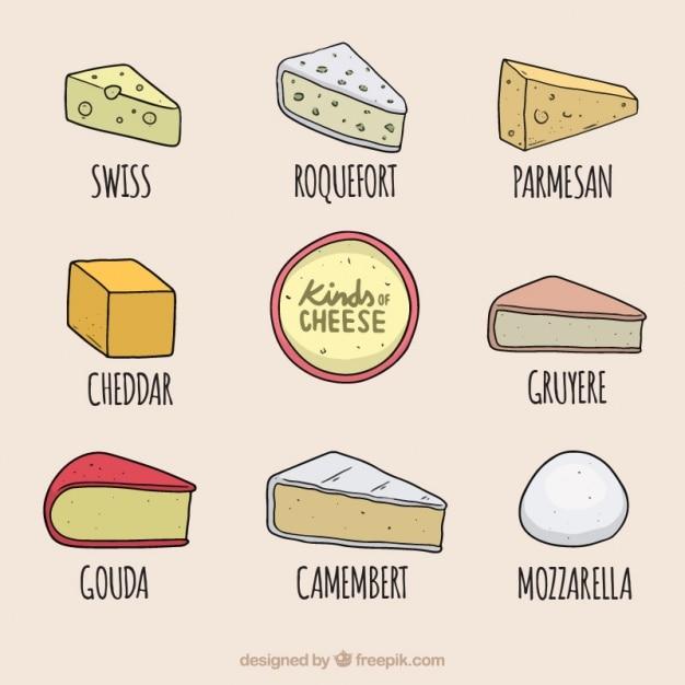Köstlicher käse auswahl Kostenlosen Vektoren