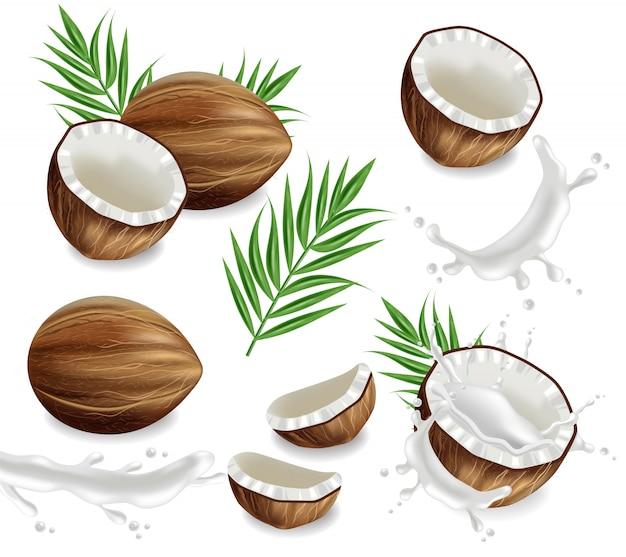 Kokosnüsse mit spritzensammlung Premium Vektoren