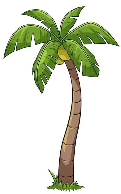 Kokosnussbaum-Karikaturart | Download der Premium Vektor