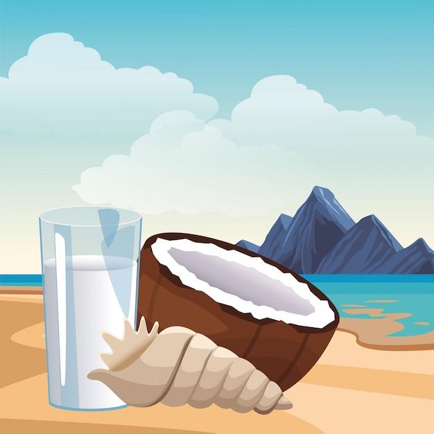 Kokosnusswasser muschel Premium Vektoren