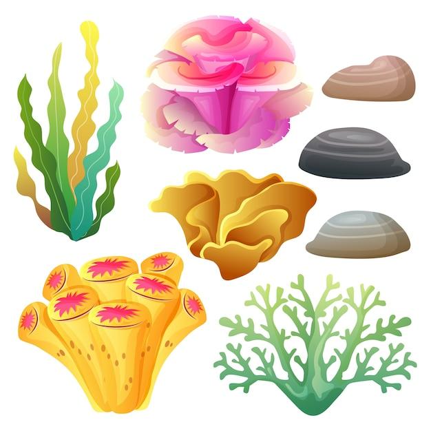 Korallenriff-sammlungssatz Premium Vektoren