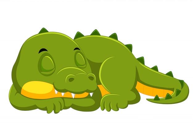 Krokodil, das auf weißem hintergrund schläft Premium Vektoren