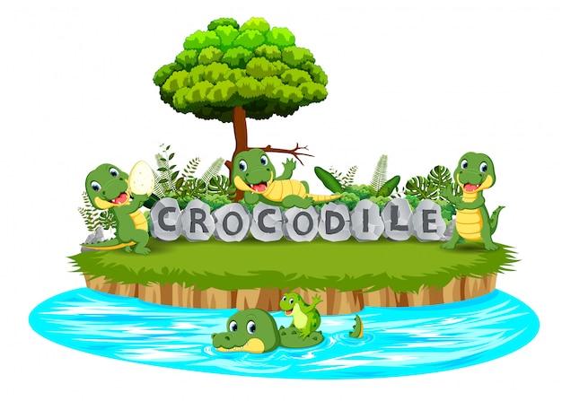 Krokodil spielen zusammen im garten Premium Vektoren