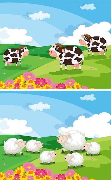 Kühe und schafe auf den feldern Kostenlosen Vektoren