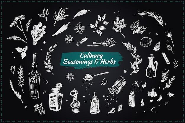 Kulinarische gewürze und kräuter. handgezeichnete symbole Premium Vektoren