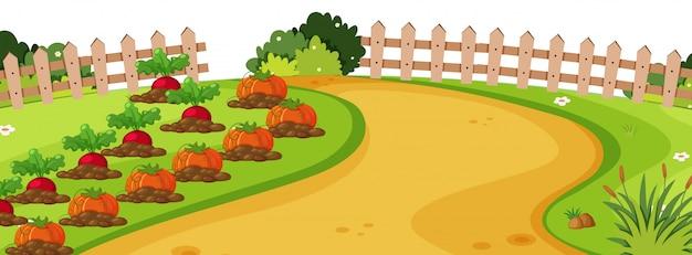 Landschaftshintergrund mit gemüse im garten Premium Vektoren