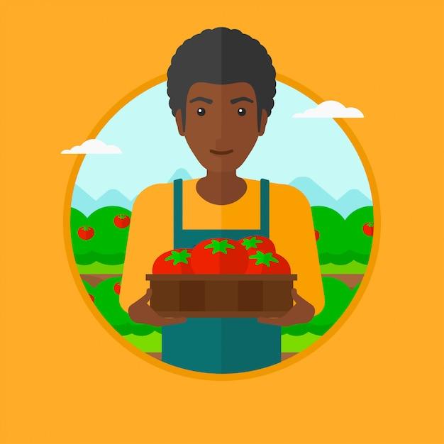 Landwirt, der tomatenvektorillustration sammelt. Premium Vektoren