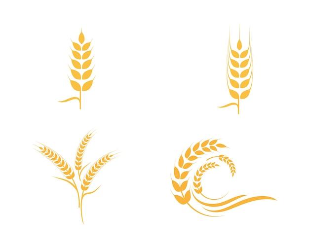 Landwirtschaft weizen logo vorlage Premium Vektoren