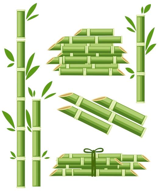 Landwirtschaftliche nutzpflanzen von zuckerpflanzen Premium Vektoren
