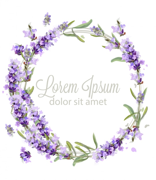 Lavendel kranz karte aquarell Premium Vektoren