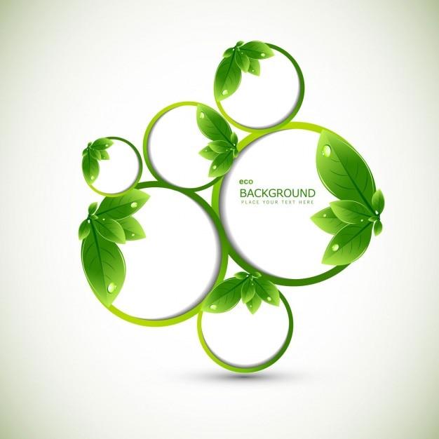 Leaves ökologie hintergrund Kostenlosen Vektoren