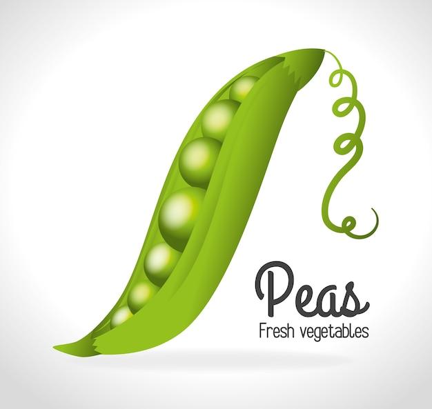 Lebensmittel-design Premium Vektoren