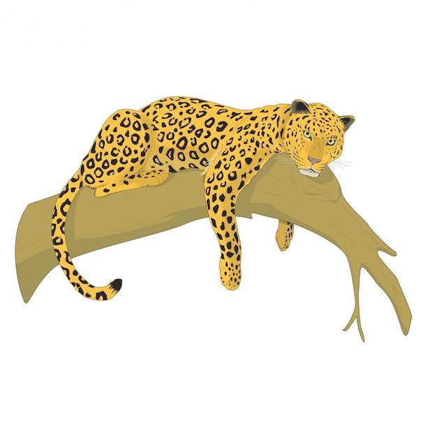Leopard auf einem baum Premium Vektoren