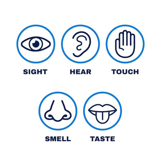 Line-icon-set von fünf menschlichen sinnen. Premium Vektoren