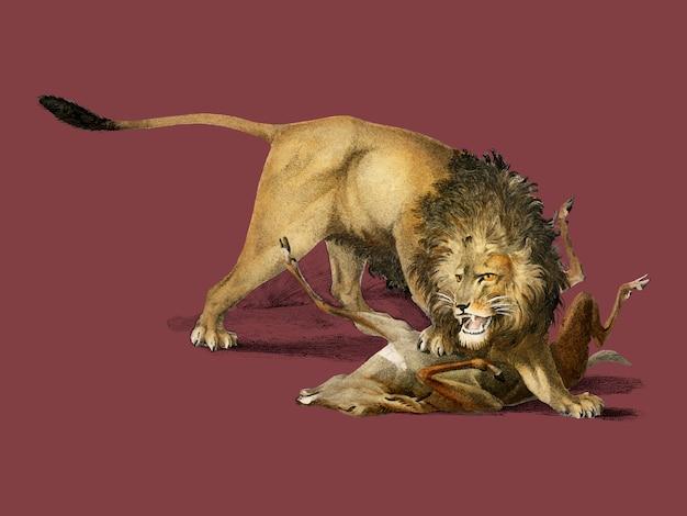 Löwe, der ein reh isst Kostenlosen Vektoren