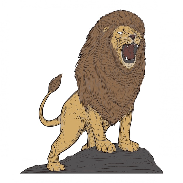 Löwe in der weinlesezeichnungsart Premium Vektoren