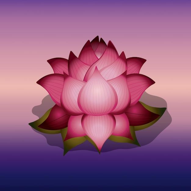 Lotus flower über unschärfe hintergrund isoliert icon design Premium Vektoren