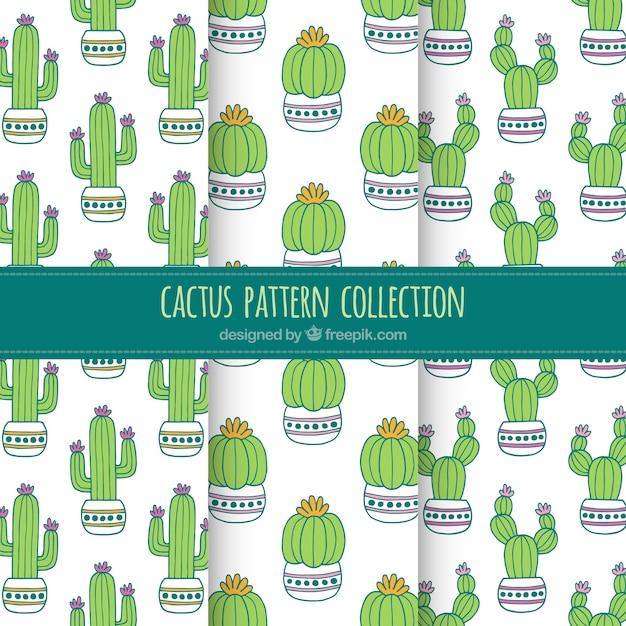 Lovely packung kaktus muster Kostenlosen Vektoren