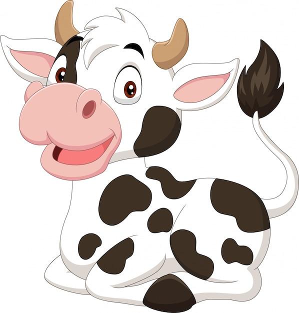 Lustige kuh der karikatur, die auf weißem hintergrund sitzt Premium Vektoren