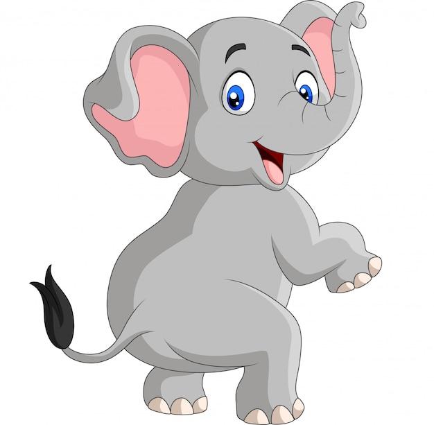 Lustiger elefant der karikatur lokalisiert Premium Vektoren