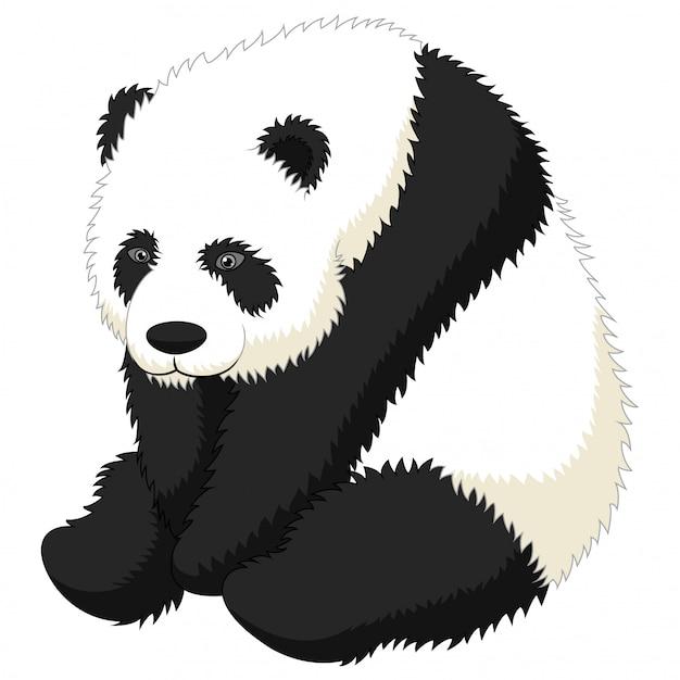 Lustiges erwachsenes sitzen des großen pandas der karikatur Premium Vektoren