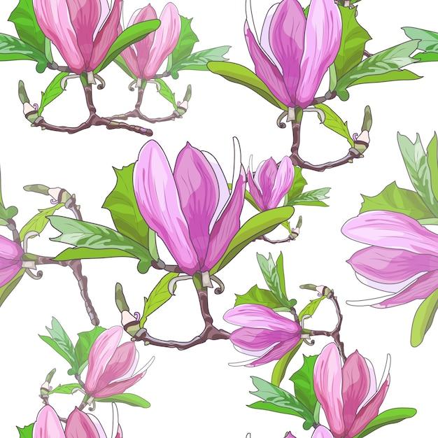 Magnolie blüht nahtloses muster Premium Vektoren