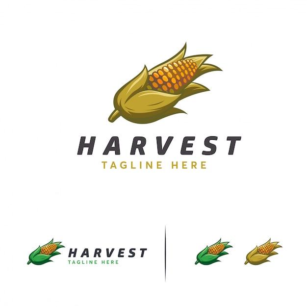 Maisernte-logo-designs Premium Vektoren