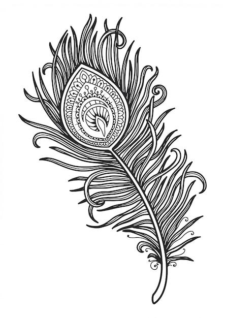 mandala für malvorlagen pfauenfeder design  premiumvektor