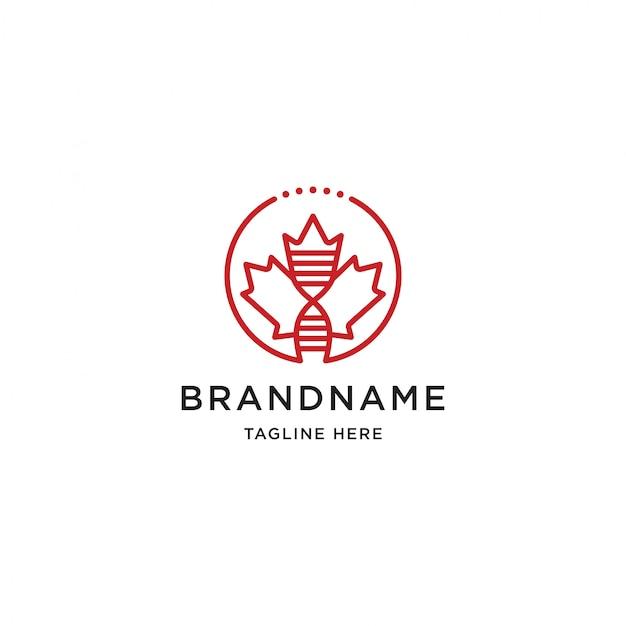 Maple leaf logo entwurfsvorlage Premium Vektoren