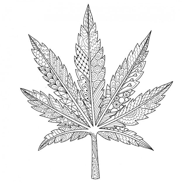 Marihuana-blatt Premium Vektoren
