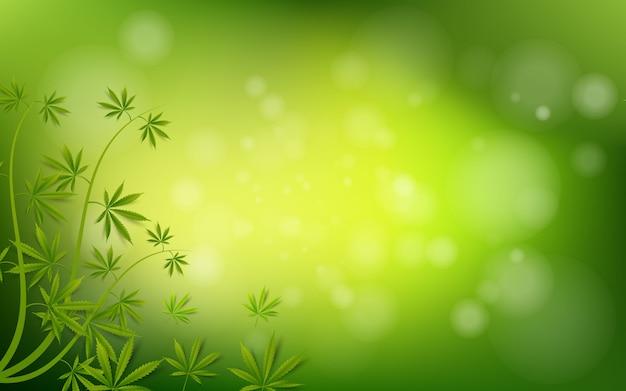 Marihuanakraut hintergrund der grünen droge des hanfblattes Premium Vektoren