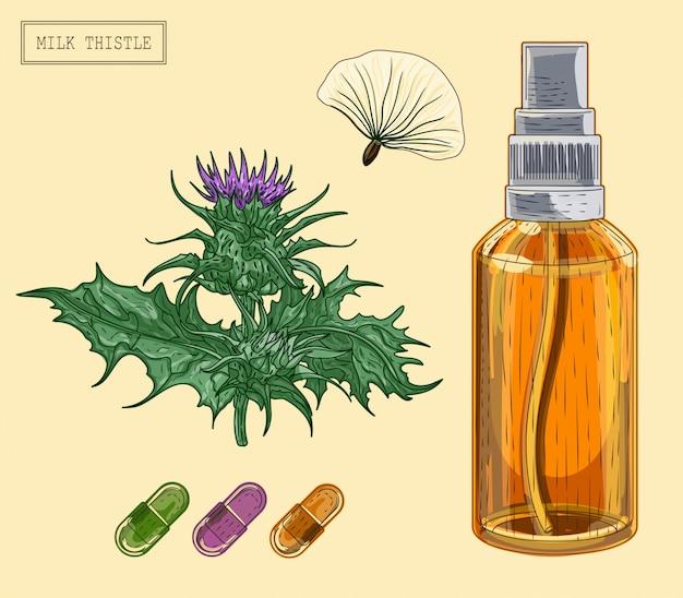 Medizinische mariendistel pflanze und flasche und pillen Premium Vektoren
