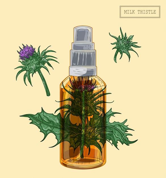Medizinische mariendistelblumen und -sprüher, handgezeichnete illustration in einem retro-stil Premium Vektoren