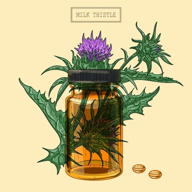 Medizinische mariendistelpflanze und pillen und glasfläschchen, handgezeichnete illustration in einem retro-stil Premium Vektoren