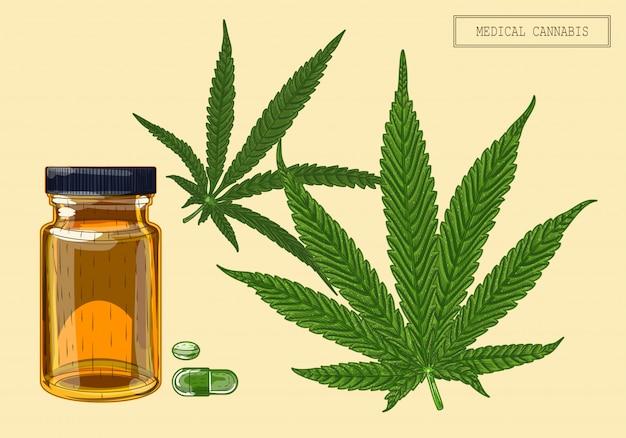 Medizinisches cannabis zwei blätter und fläschchen Premium Vektoren