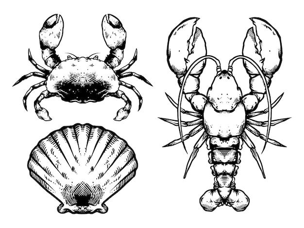 Meeresfrüchte-pack design schwarz und weiß Premium Vektoren