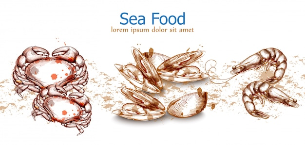 Meeresfrüchte vorlage krabben meeresfrüchte Premium Vektoren
