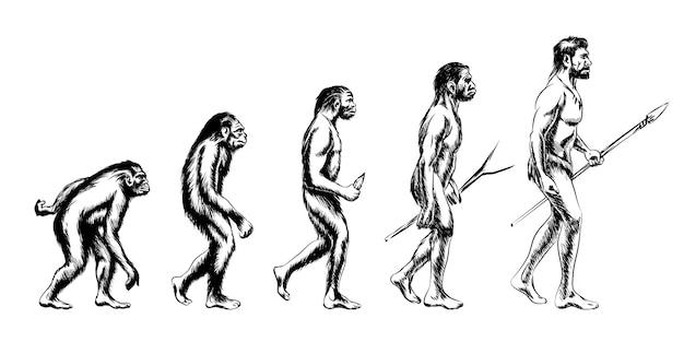 Menschliche evolution. affe und australopithecus, neandertaler und tier Kostenlosen Vektoren