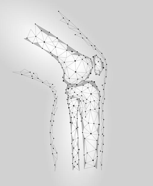 Menschliches kniegelenk 3d vorbildliche vektorillustration. low poly Premium Vektoren