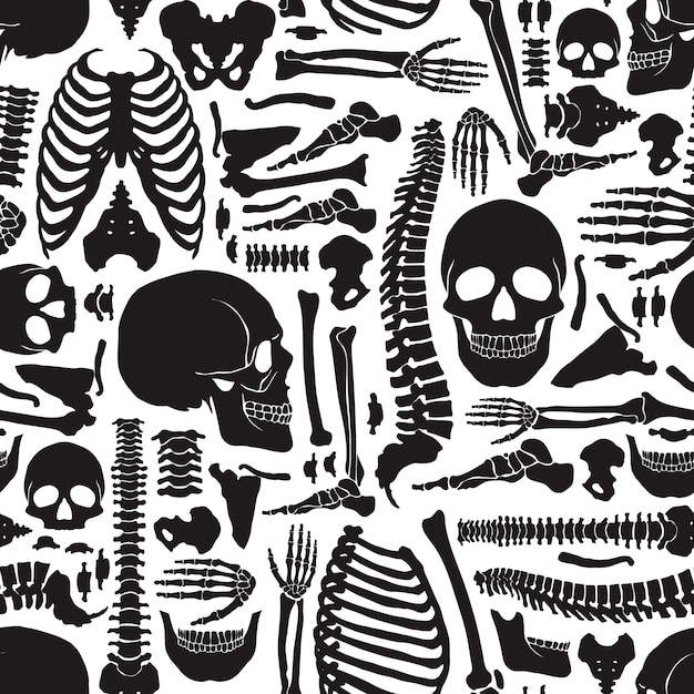Menschliches knochen-skelettmuster Kostenlosen Vektoren