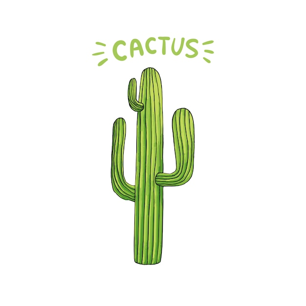 Mexikanischer kaktus Kostenlosen Vektoren