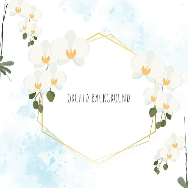Minimaler flacher weißer phalaenopsis-orchideenkranz mit goldenem rahmen auf blauem aquarell Premium Vektoren
