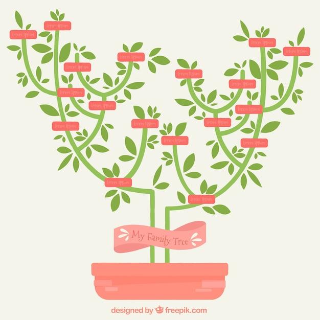 Minimalist stammbaum in flaches design download der for Was ist ein minimalist