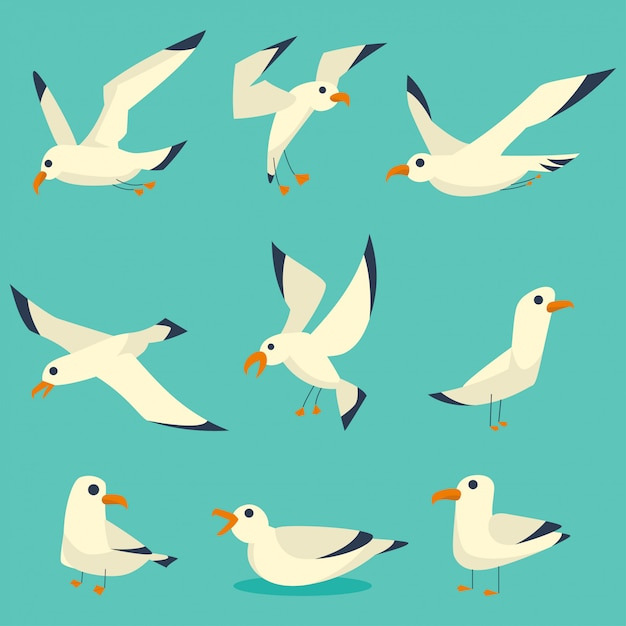 Möwen vögel cartoon-set Premium Vektoren