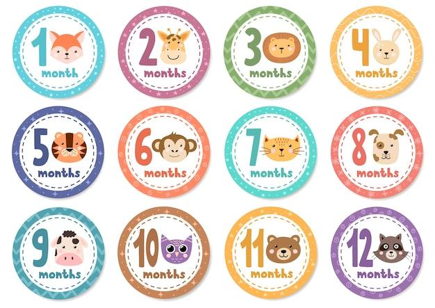 Monatliche babyaufkleber mit niedlichen tieren. Premium Vektoren