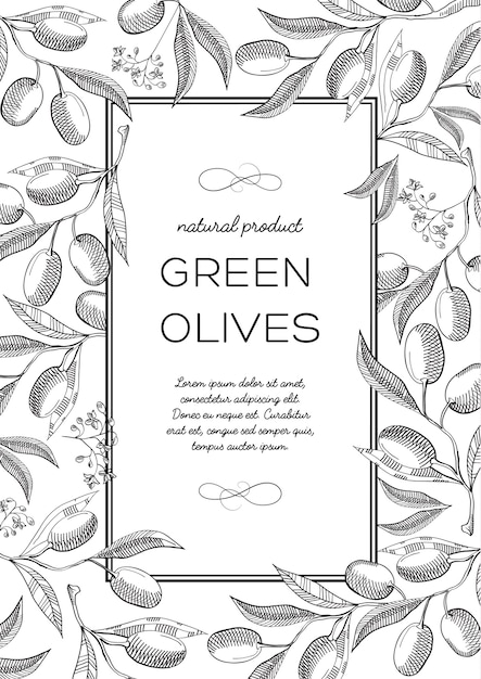 Monochrome quadratische rahmenkomposition mit olivenbeeren, blüten und nützlichen informationen in der mitte Kostenlosen Vektoren