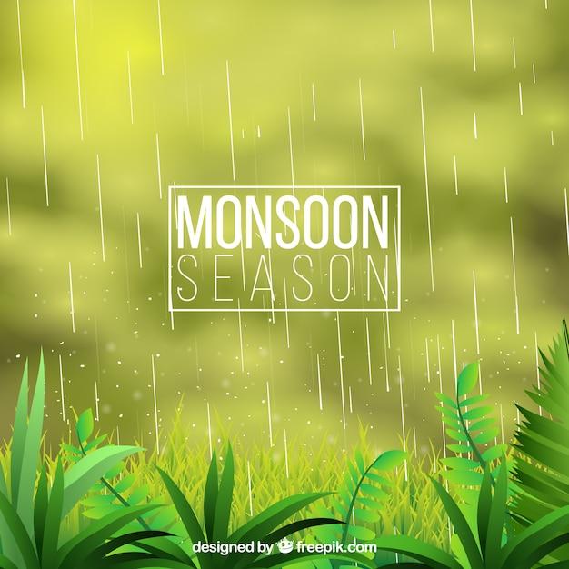 Monsun verschwommen hintergrund mit der natur Kostenlosen Vektoren