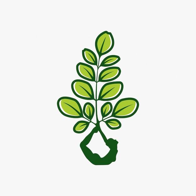 Moringa-logo-design Premium Vektoren