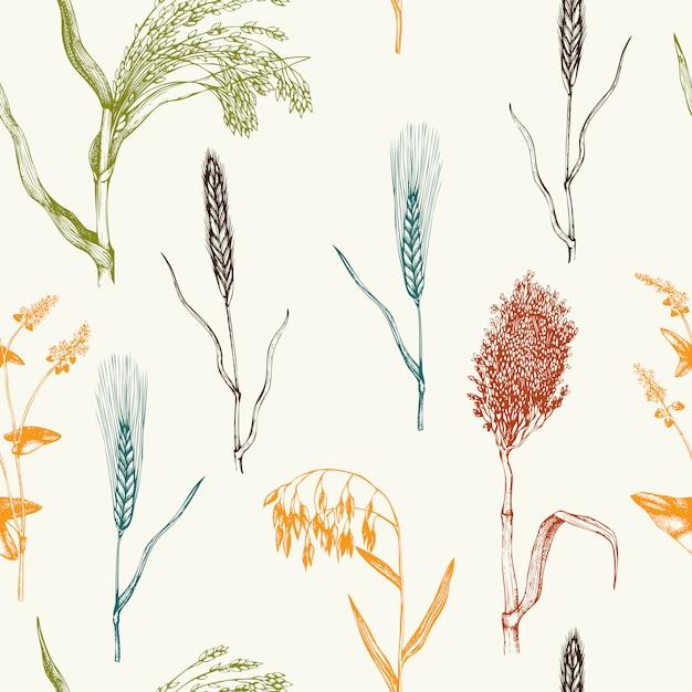 Muster mit handgezeichneten getreidekulturen. hand skizzierte landwirtschaftliche pflanzen hintergrund Premium Vektoren