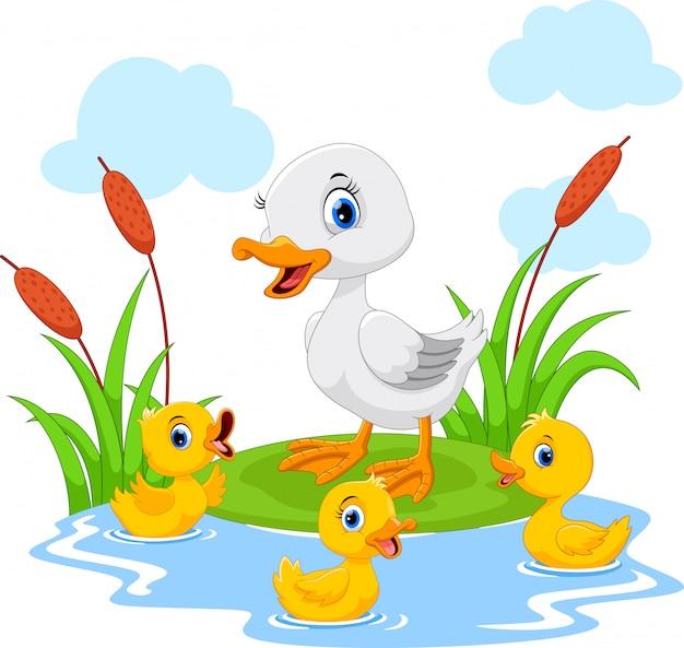 Mutter ente schwimmt mit ihren drei kleinen süßen entlein im teich Premium Vektoren